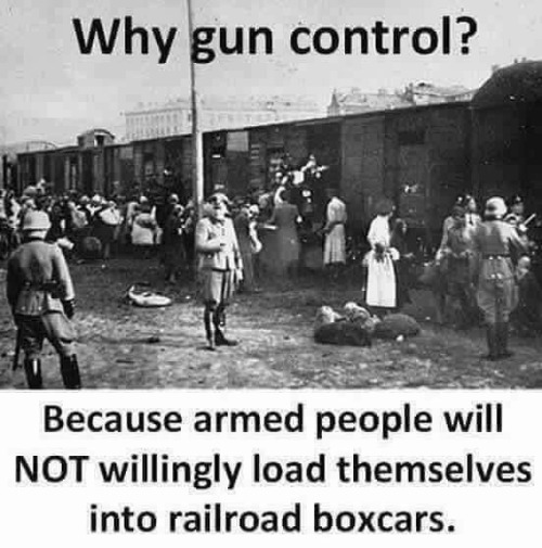Why gun control? | image tagged in holocaust revisited,gun control,hitler,stalin,mao,pol pot | made w/ Imgflip meme maker