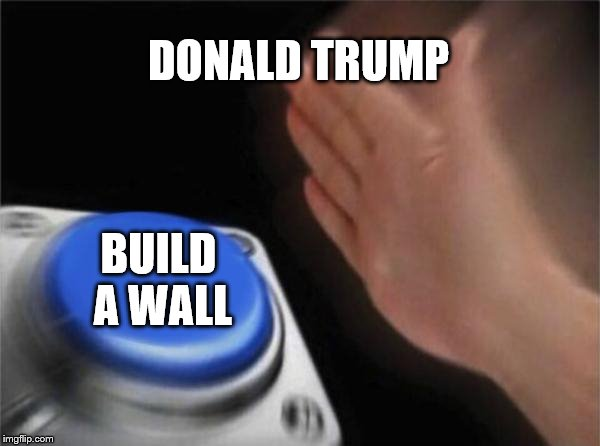 Blank Nut Button Meme | DONALD TRUMP BUILD A WALL | image tagged in memes,blank nut button | made w/ Imgflip meme maker