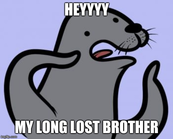 Homophobic Seal | HEYYYY MY LONG LOST BROTHER | image tagged in memes,homophobic seal | made w/ Imgflip meme maker