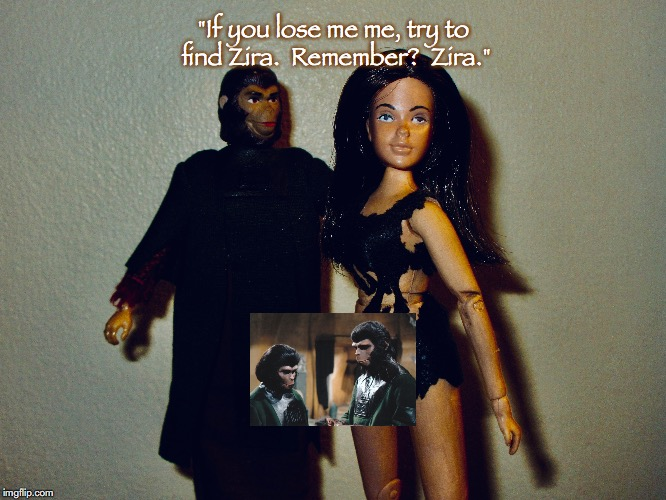 "Zira and Nova | ""If you lose me me, try to find Zira.  Remember?  Zira."" 
