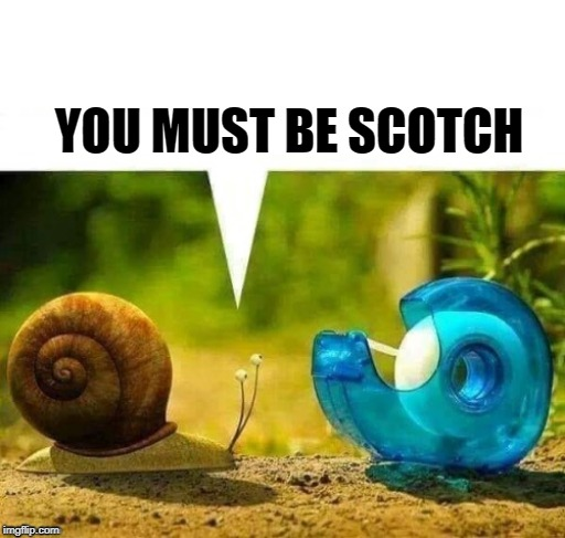 YOU MUST BE SCOTCH | made w/ Imgflip meme maker