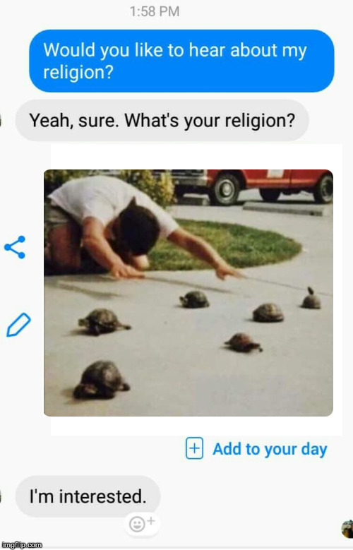 Turtle cult | image tagged in religion,turtle,worship,cult,tortoise | made w/ Imgflip meme maker
