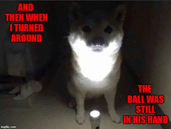 Dog horror stories! | AND THEN WHEN I TURNED AROUND THE BALL WAS STILL IN HIS HAND | image tagged in dog blair witch project,memes,horror stories,funny,dogs,playing fetch | made w/ Imgflip meme maker