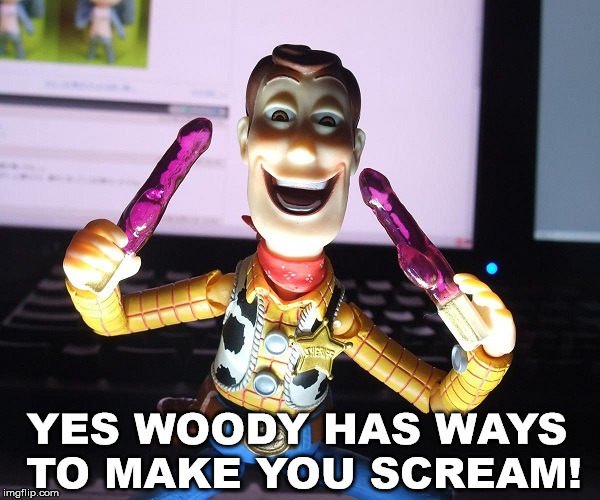 Toy Story 5, Woody helps his former kids achieve happiness | YES WOODY HAS WAYS TO MAKE YOU SCREAM! | image tagged in toy story,woody,epic movie,crazy | made w/ Imgflip meme maker