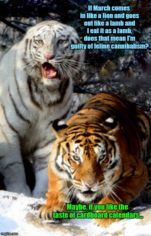 Shut up already, Fred | If March comes in like a lion and goes out like a lamb and I eat it as a lamb, does that mean I'm guilty of feline cannibalism? Maybe, if yo | image tagged in shut up already fred,tigers,march,humor | made w/ Imgflip meme maker