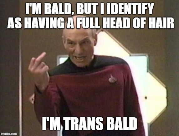 transbald meme |  I'M BALD, BUT I IDENTIFY AS HAVING A FULL HEAD OF HAIR; I'M TRANS BALD | image tagged in bold and bald,transgender,trans,bald,attitude | made w/ Imgflip meme maker