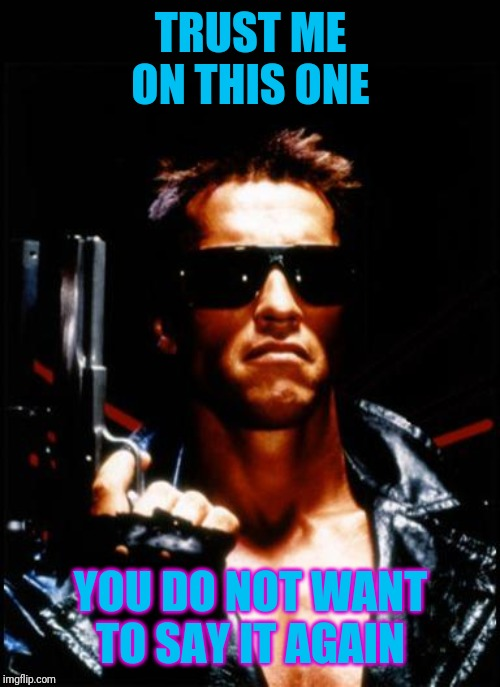 terminator arnold schwarzenegger | TRUST ME ON THIS ONE YOU DO NOT WANT TO SAY IT AGAIN | image tagged in terminator arnold schwarzenegger | made w/ Imgflip meme maker