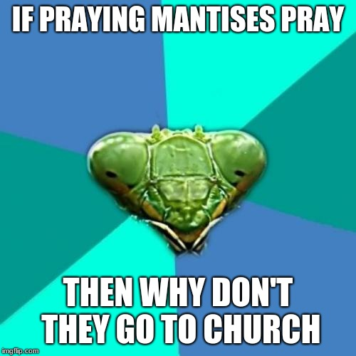 Crazy Girlfriend Praying Mantis | IF PRAYING MANTISES PRAY THEN WHY DON'T THEY GO TO CHURCH | image tagged in memes,crazy girlfriend praying mantis | made w/ Imgflip meme maker