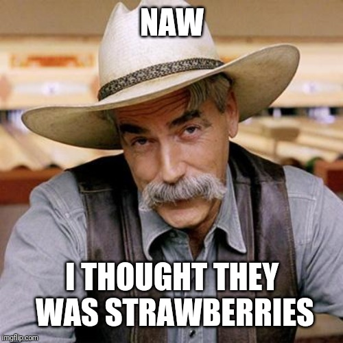 SARCASM COWBOY | NAW I THOUGHT THEY WAS STRAWBERRIES | image tagged in sarcasm cowboy | made w/ Imgflip meme maker