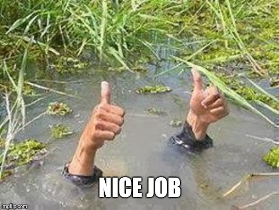 FLOODING THUMBS UP | NICE JOB | image tagged in flooding thumbs up | made w/ Imgflip meme maker