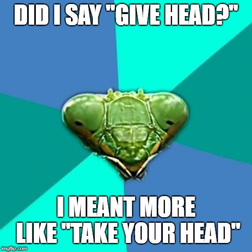 "When picking someone up you gotta listen carefully | DID I SAY ""GIVE HEAD?"" I MEANT MORE LIKE ""TAKE YOUR HEAD"" 