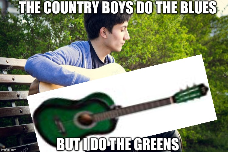 I do the greens | THE COUNTRY BOYS DO THE BLUES BUT I DO THE GREENS | image tagged in epic,blues,greens,guitar,tomanytags | made w/ Imgflip meme maker