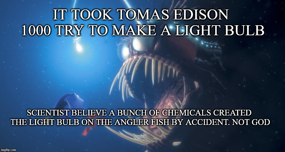 IT TOOK TOMAS EDISON 1000 TRY TO MAKE A LIGHT BULB SCIENTIST BELIEVE A BUNCH OF CHEMICALS CREATED THE LIGHT BULB ON THE ANGLER FISH BY ACCID  made w Imgflip meme maker