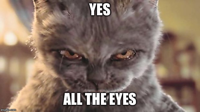Evil Cat | YES ALL THE EYES | image tagged in evil cat | made w/ Imgflip meme maker