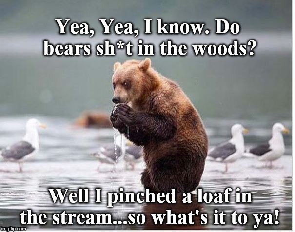 What nerve,humans can be so un-bear-able. | Yea, Yea, I know. Do bears sh*t in the woods? Well I pinched a loaf in the stream...so what's it to ya! | image tagged in well shit | made w/ Imgflip meme maker