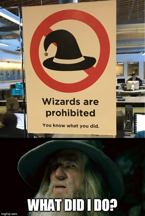 Confused Gandalf | WHAT DID I DO? | image tagged in confused gandalf,wizards,funny signs | made w/ Imgflip meme maker