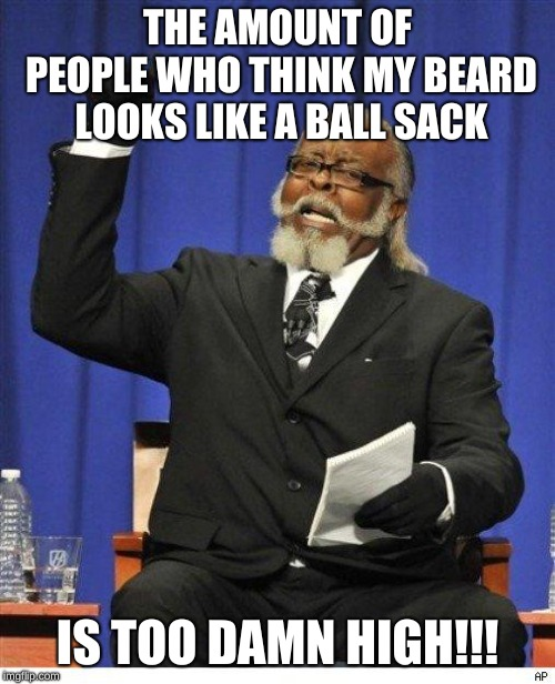 I've been waiting since yesterday to make this! Finally! | THE AMOUNT OF PEOPLE WHO THINK MY BEARD LOOKS LIKE A BALL SACK IS TOO DAMN HIGH!!! | image tagged in the amount of x is too damn high,fun,memes,funny | made w/ Imgflip meme maker