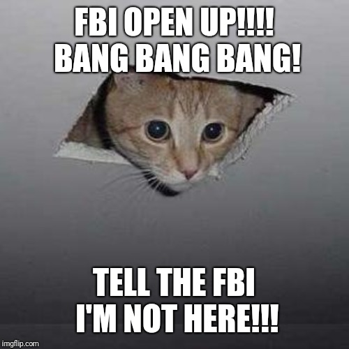 Ceiling Cat | FBI OPEN UP!!!! BANG BANG BANG! TELL THE FBI I'M NOT HERE!!! | image tagged in memes,ceiling cat | made w/ Imgflip meme maker