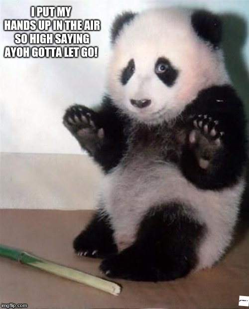 Hands Up panda | I PUT MY HANDS UP IN THE AIR SO HIGH SAYING AYOH GOTTA LET GO! | image tagged in hands up panda | made w/ Imgflip meme maker