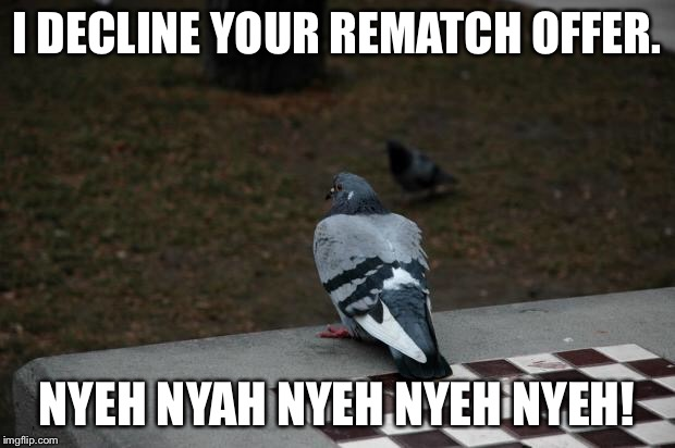 Rematch Offer Declined. | I DECLINE YOUR REMATCH OFFER. NYEH NYAH NYEH NYEH NYEH! | image tagged in pigeon shitting on chess board,chess,haha,trololol,denied,nope | made w/ Imgflip meme maker