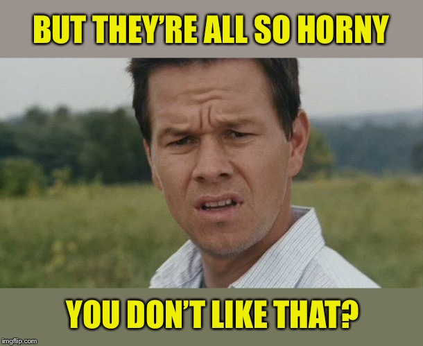 Mark Wahlburg confused | BUT THEY'RE ALL SO HORNY YOU DON'T LIKE THAT? | image tagged in mark wahlburg confused | made w/ Imgflip meme maker