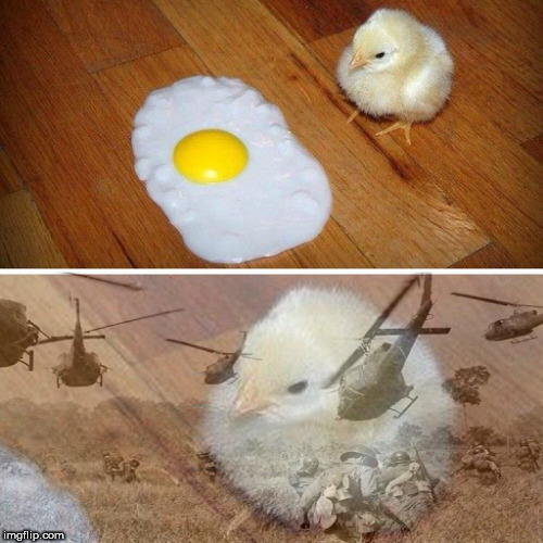 My brother sent this to me- poor guy | image tagged in chicken,chick,war,egg,shadow | made w/ Imgflip meme maker