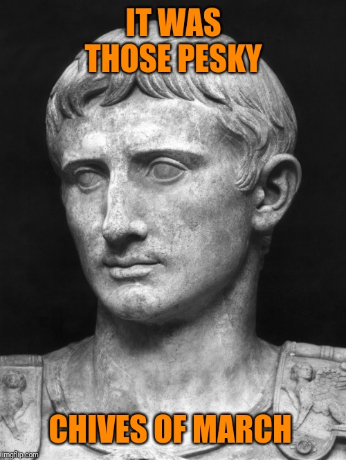 Julius Caesar 5 | IT WAS THOSE PESKY CHIVES OF MARCH | image tagged in julius caesar 5 | made w/ Imgflip meme maker