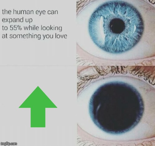 Eye pupil expand | image tagged in eye pupil expand,memes,funny,upvote | made w/ Imgflip meme maker