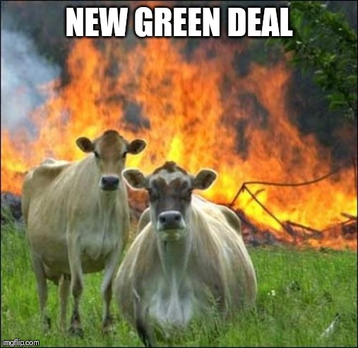 Evil Cows | NEW GREEN DEAL | image tagged in memes,evil cows | made w/ Imgflip meme maker