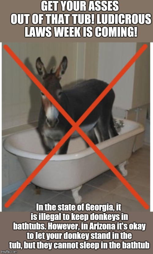 Ludicrous Laws Week. Hosted by Lord Cheesus,  SydneyB and Katechuks.  April 1-7 | GET YOUR ASSES OUT OF THAT TUB! LUDICROUS LAWS WEEK IS COMING! In the state of Georgia, it is illegal to keep donkeys in bathtubs. However,  | image tagged in ludicrouslawsweek | made w/ Imgflip meme maker