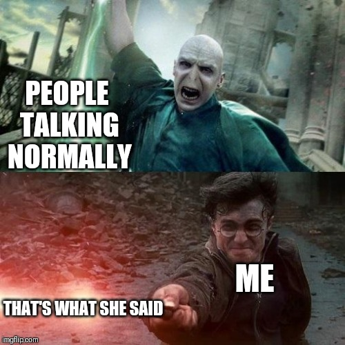 Harry Potter meme | PEOPLE TALKING NORMALLY THAT'S WHAT SHE SAID ME | image tagged in harry potter meme | made w/ Imgflip meme maker