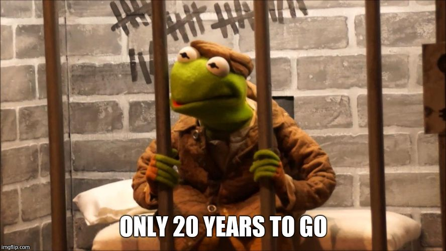 Kermit in jail | ONLY 20 YEARS TO GO | image tagged in kermit in jail | made w/ Imgflip meme maker