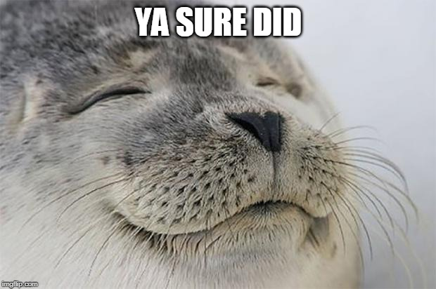 Satisfied Seal Meme | YA SURE DID | image tagged in memes,satisfied seal | made w/ Imgflip meme maker