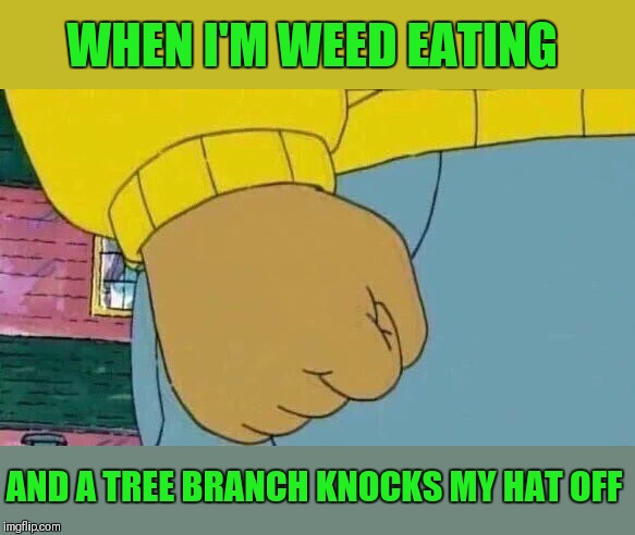 So annoying!!! | WHEN I'M WEED EATING AND A TREE BRANCH KNOCKS MY HAT OFF | image tagged in memes,arthur fist,mowing,weed eater,hats,annoying | made w/ Imgflip meme maker