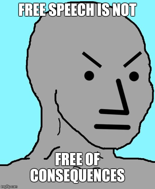 Angry NPC | FREE SPEECH IS NOT FREE OF CONSEQUENCES | image tagged in angry npc | made w/ Imgflip meme maker