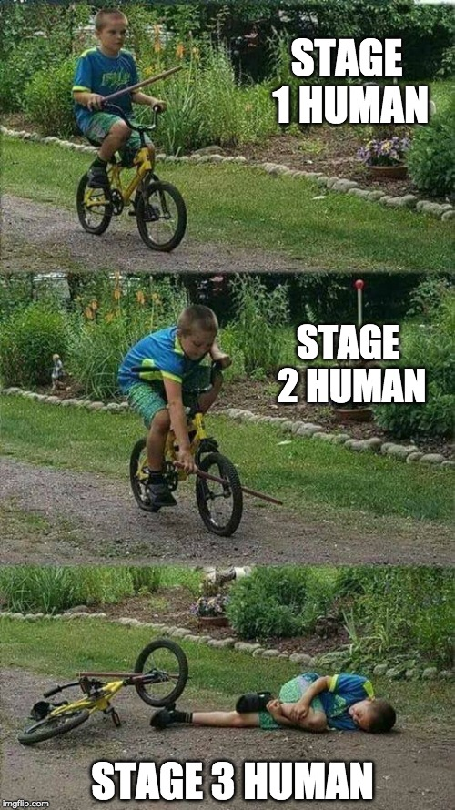 The Inevitable Stages Of Human Evolution Imgflip