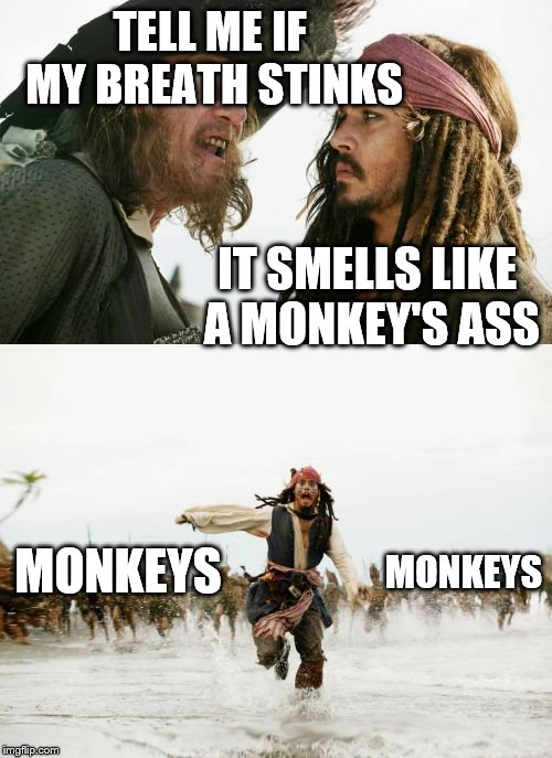 How dare you insult the mighty monekys!!!!!!!!!! | TELL ME IF MY BREATH STINKS IT SMELLS LIKE A MONKEY'S ASS MONKEYS MONKEYS | image tagged in memes,jack sparrow being chased,barbosa and sparrow,monkeys | made w/ Imgflip meme maker