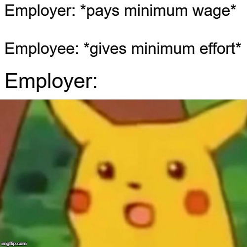 You're So Fired | Employer: *pays minimum wage* Employee: *gives minimum effort* Employer: | image tagged in memes,surprised pikachu,unemployment,employees,pay,payday | made w/ Imgflip meme maker