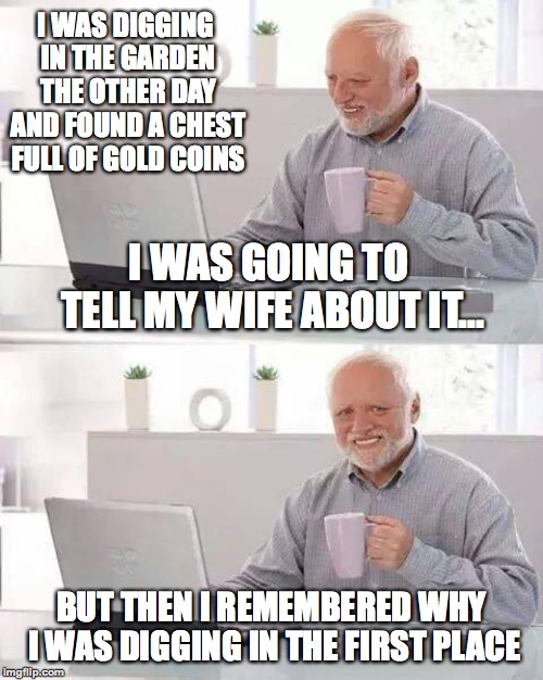 He was digging her grave... >:-) | I WAS DIGGING IN THE GARDEN THE OTHER DAY AND FOUND A CHEST FULL OF GOLD COINS BUT THEN I REMEMBERED WHY I WAS DIGGING IN THE FIRST PLACE I  | image tagged in memes,hide the pain harold,funny,grave,dark humor,memelord344 | made w/ Imgflip meme maker