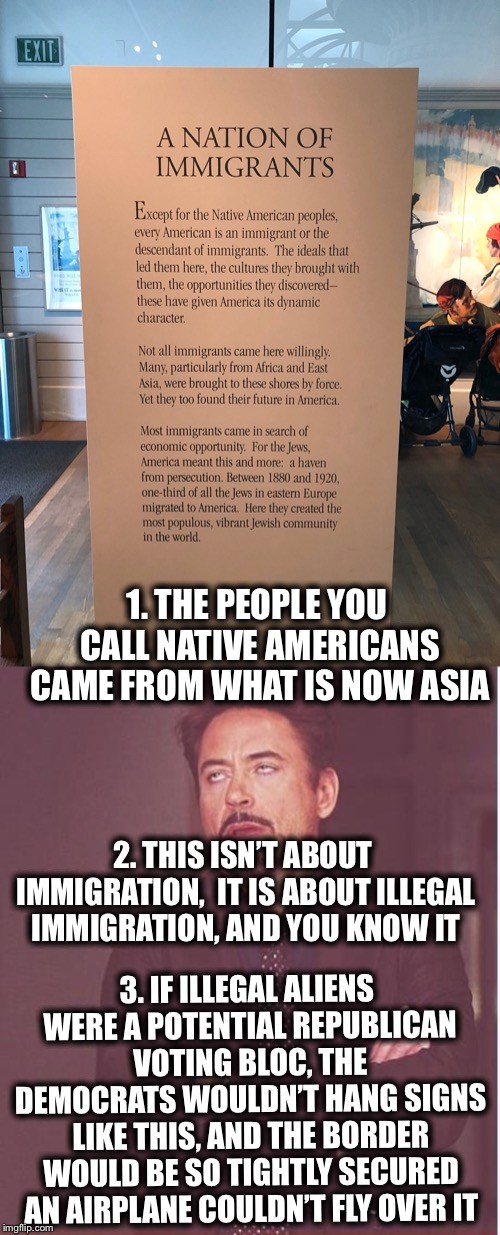 1. THE PEOPLE YOU CALL NATIVE AMERICANS CAME FROM WHAT IS NOW ASIA 2. THIS ISN'T ABOUT IMMIGRATION,  IT IS ABOUT ILLEGAL IMMIGRATION, AND YO | image tagged in memes,face you make robert downey jr,illegal aliens,illegal immigration,democrats,democratic party | made w/ Imgflip meme maker