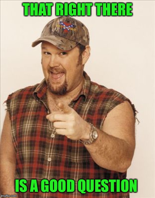 Larry The Cable Guy | THAT RIGHT THERE IS A GOOD QUESTION | image tagged in larry the cable guy | made w/ Imgflip meme maker