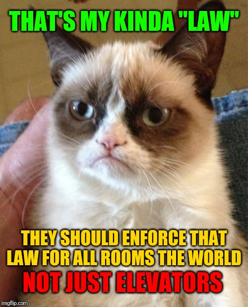"Grumpy Cat Meme | THAT'S MY KINDA ""LAW"" THEY SHOULD ENFORCE THAT LAW FOR ALL ROOMS THE WORLD NOT JUST ELEVATORS 