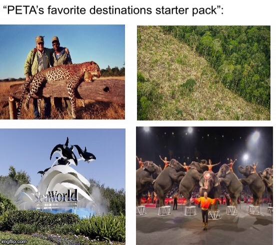 image tagged in peta,africa,jungle,seaworld,circus | made w/ Imgflip meme maker