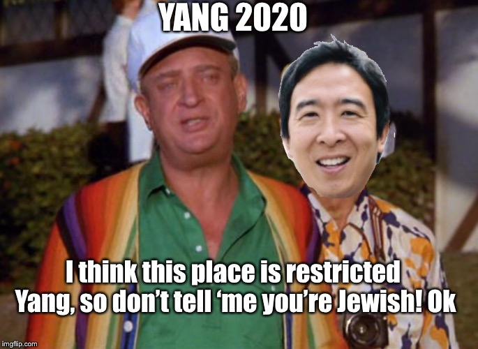 Yang 2020 |  YANG 2020; I think this place is restricted Yang, so don't tell 'me you're Jewish! Ok | image tagged in yang,election 2020,rodney dangerfield | made w/ Imgflip meme maker