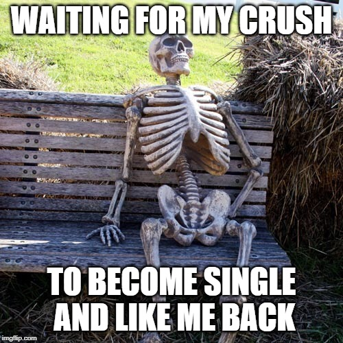 WAITING FOR MY CRUSH TO BECOME SINGLE AND LIKE ME BACK | image tagged in single,single life,crush | made w/ Imgflip meme maker