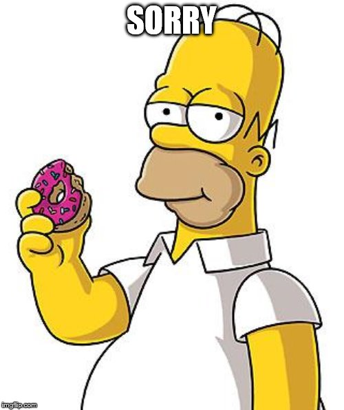 Homer Donut | SORRY | image tagged in homer donut | made w/ Imgflip meme maker
