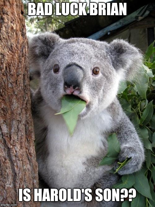 Surprised Koala Meme | BAD LUCK BRIAN IS HAROLD'S SON?? | image tagged in memes,surprised koala | made w/ Imgflip meme maker
