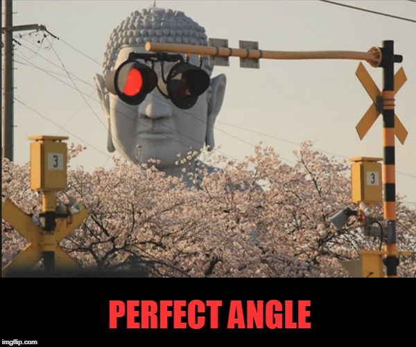 PERFECT ANGLE | image tagged in photography,cool | made w/ Imgflip meme maker