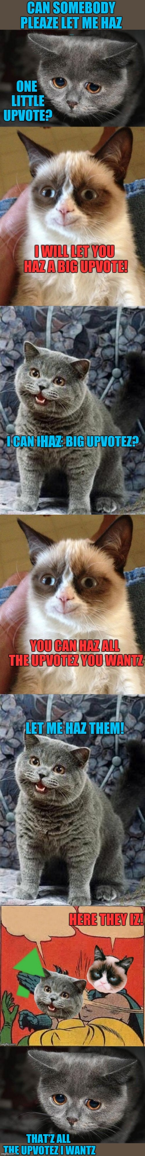 I wants upvote | HAZ THAT'Z ALL THE UPVOTEZ I WANTZ | image tagged in memes,grumpy cat,i can has cheezburger cat,begging for upvotes,batman slapping robin,funny | made w/ Imgflip meme maker