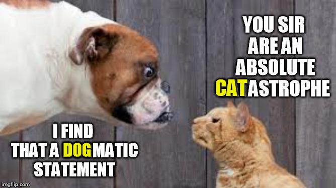 dog cat staredown | YOU SIR ARE AN ABSOLUTE CATASTROPHE I FIND THAT A DOGMATIC STATEMENT CAT D0G | image tagged in dog cat staredown | made w/ Imgflip meme maker